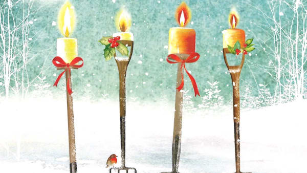 Four Candles Christmas Cards